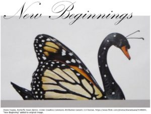 Butterfly Swan New Beginnings