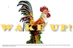 Rooster Wake-Up Call